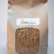 Herbe de blé 1kg