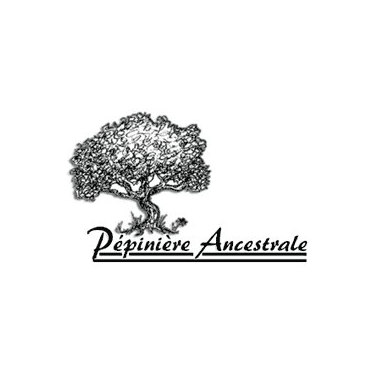 logo-pepiniere-ancestrale