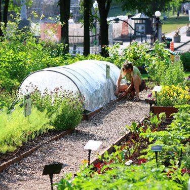 Vue d'ensemble d'un jardin potager. Une horticultrice est accroupie à côté d'une rangée de cultures recouverte d'un mini tunnel en agrotextile blanc.