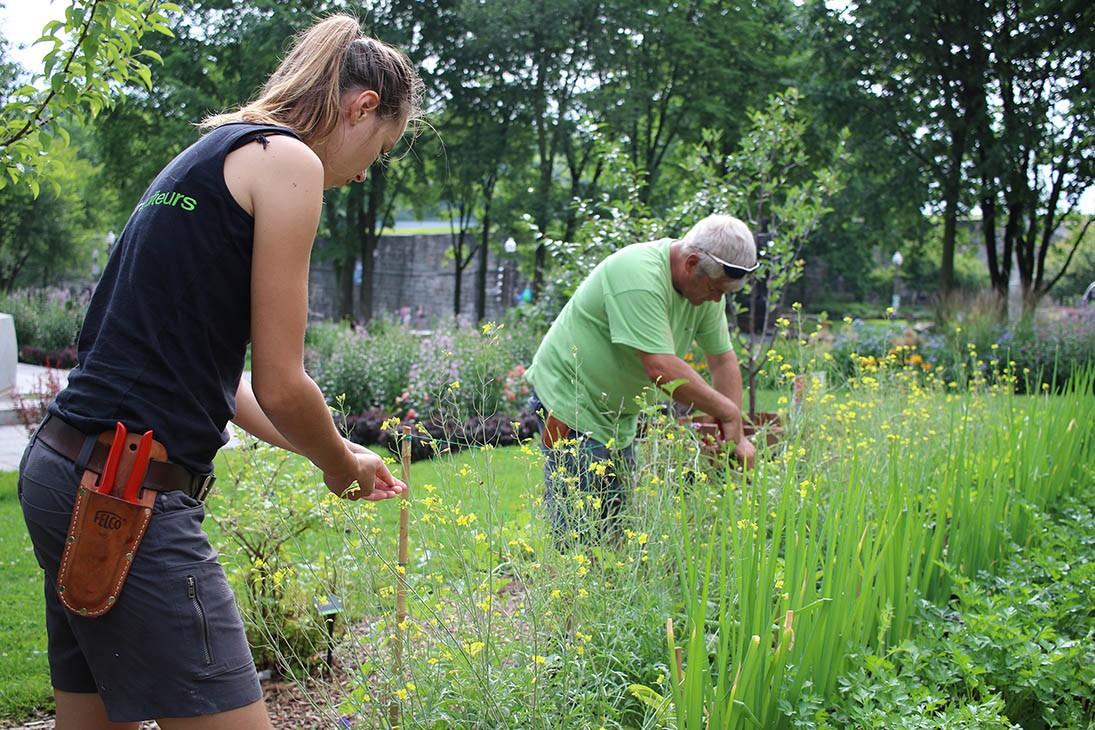 Formation routine d 39 entretien pour un jardin en sant for Recherche personne pour entretien jardin