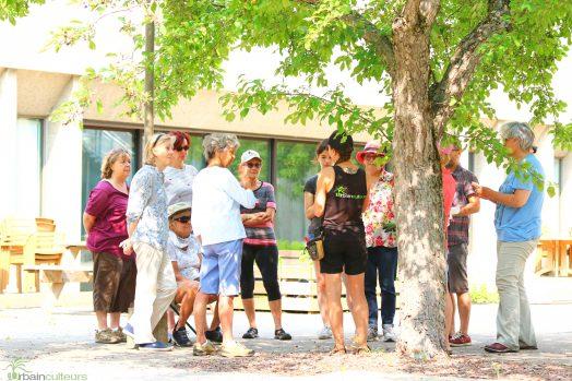 Un groupe sous un arbre qui assiste à une formation.
