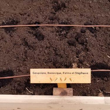 Une petite pancarte de bois indique qu'une parcelle de jardin appartient à Geneviève, Dominique, Céline et Stéphanie.