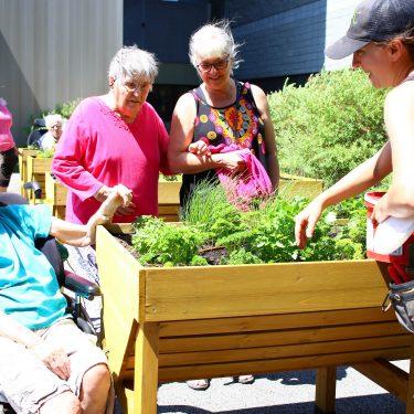 Une horticultrice sourit tout en entretenant le jardin en bac surélevé, alors que trois femmes âgées, dont une en chaise roulante, profitent de la présence du jardin.