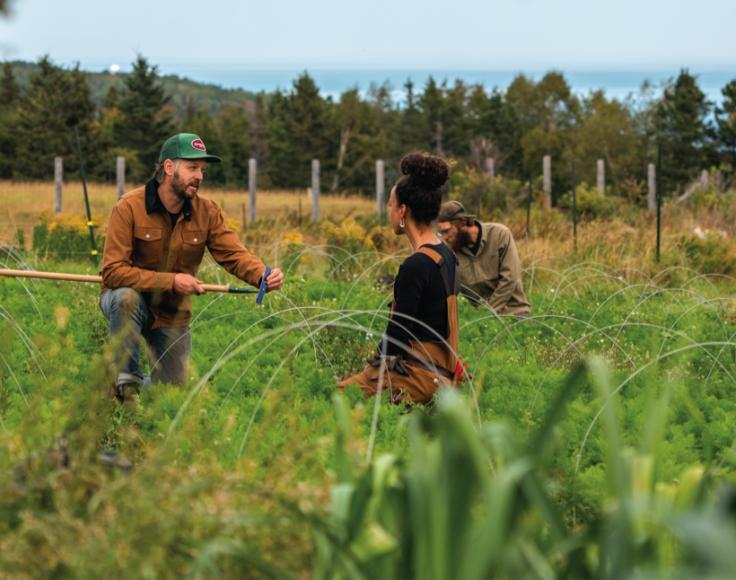 Un homme tenant un outil est agenouillé dans un champs et discute avec une femme en salopette.