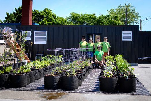Quatre femmes portant des t-shirts verts identiques se tiennent bras dessus, bras dessous, et un homme portant les mêmes vêtements et accroupi devant elles. L'équipe se tient à l'arrière d'un jardin en pots qui vient d'être planté.