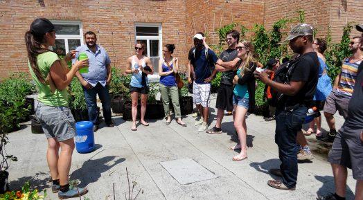 Une horticultrice portant un t-shirt des Urbainculteurs parle devant un groupe d'une dizaine de personnes. Le groupe est sur une toiture et plusieurs plantes se trouvent tout autour.